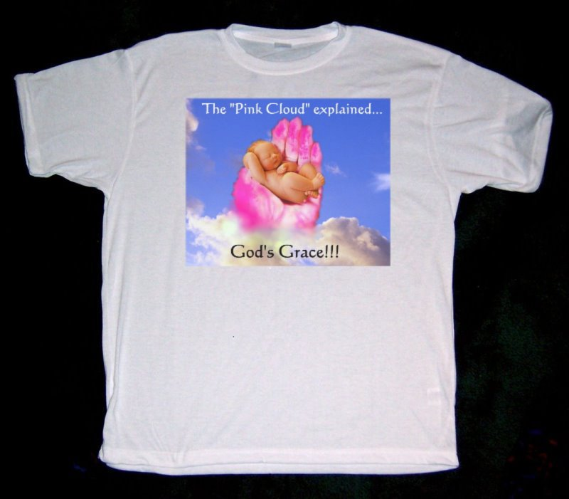 "Alcoholics Anonymous, recovery, AA inspired ""Pink Cloud"" shirt"